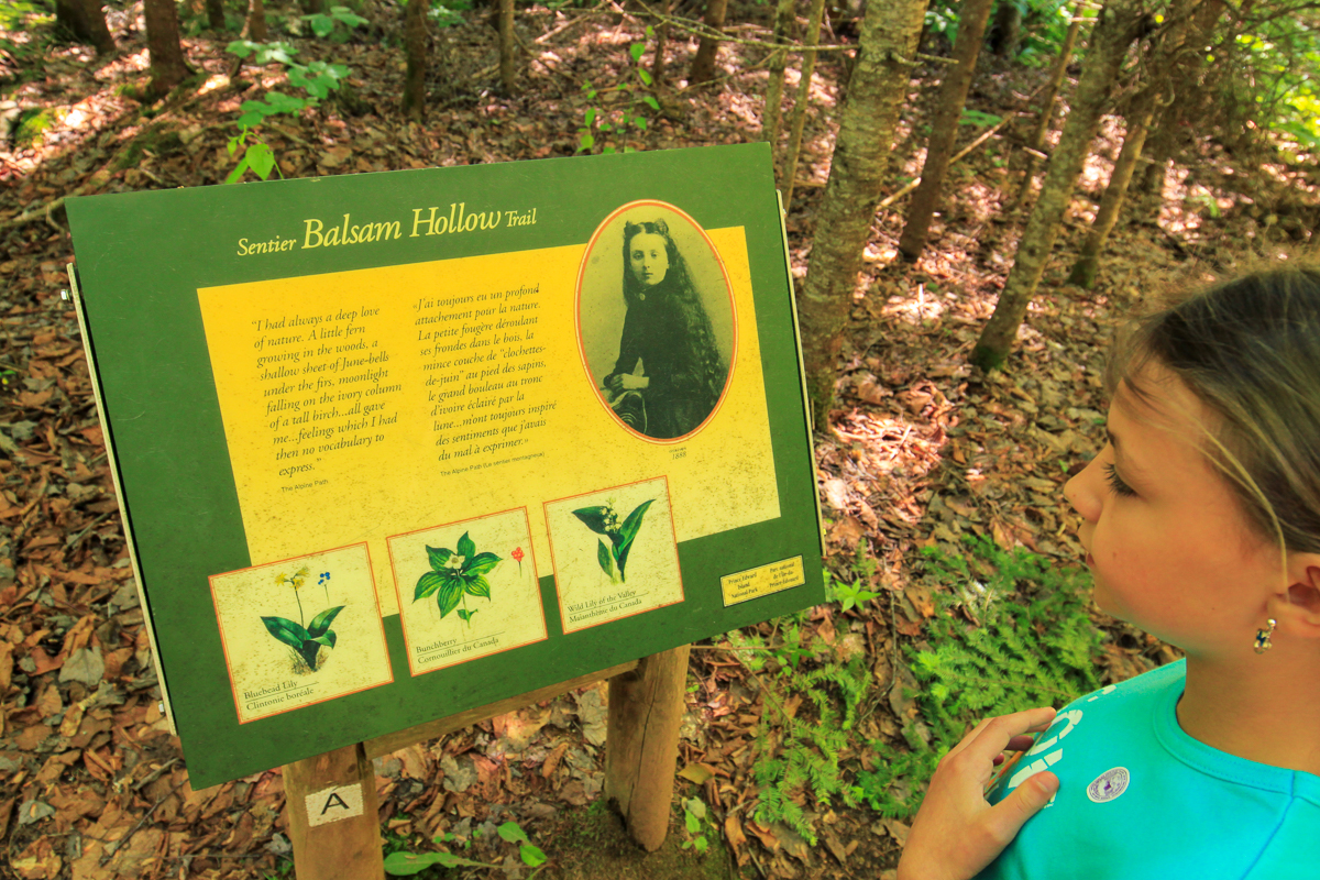 Balsam Hollow Nature sign